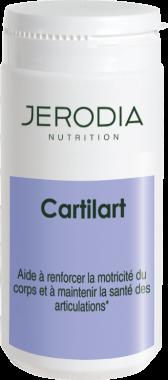 Cartilart(tm)